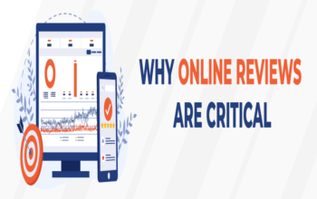 Why Online Reviews Are So Critical